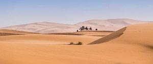 Randonnée chamelière au Maroc Fés Merzouga: 4 Jours