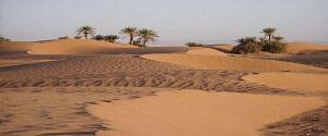 Circuit 7 Jours Agadir au Désert Chegaga